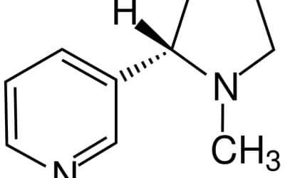 Quels sont les effets de la nicotine ?